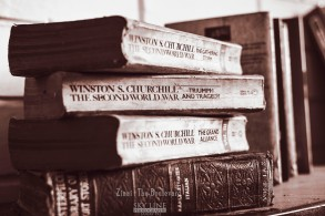 My Library, My Paradise